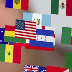 Übersetzung einer Masterarbeit, Bachelorarbeit nach Deutsch, Englisch, Französisch, Spanisch, Italienisch.